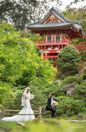 Wedding Photography - SF - Japanese Garden